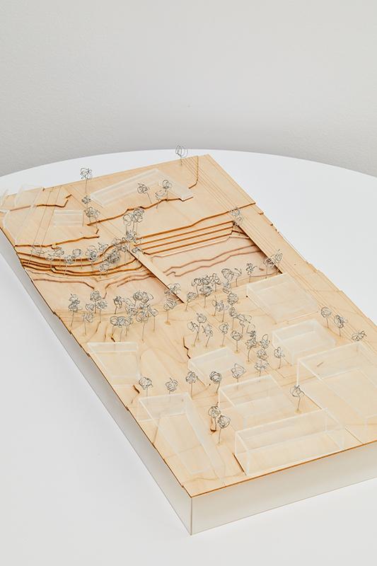 Thomas Surmon, Gabrielle Kutis, Jordan Snodgrass, Mingrao Zhang, & Rachel Pokorny