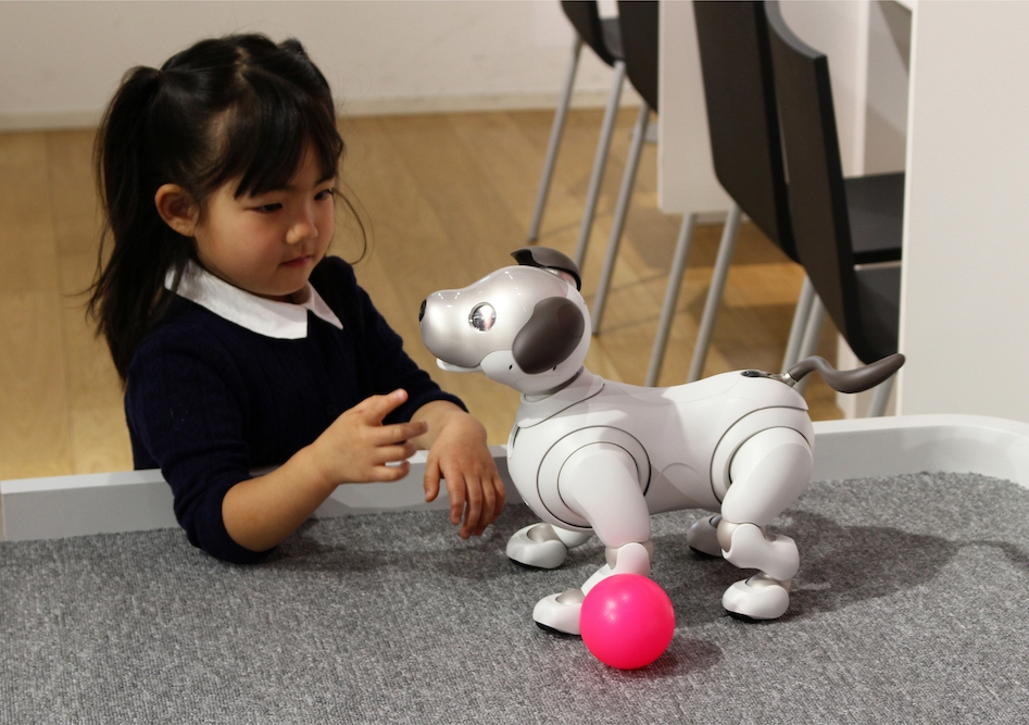 Rise of the companion machines: robotic pets could soon be in our homes and our hearts. Photo: Ned Snowman / Shutterstock.com.