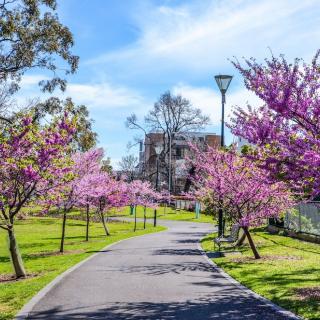 Empty Melbourne park